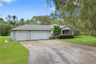 Kissimmee Single Family Home For Sale: 251 Hargrove Lane