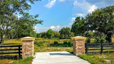 Lakeland Residential Lots & Land For Sale: 0 Old Polk City Rd