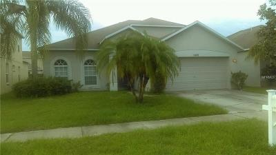 Riverview Single Family Home For Sale: 11428 Village Brook Drive
