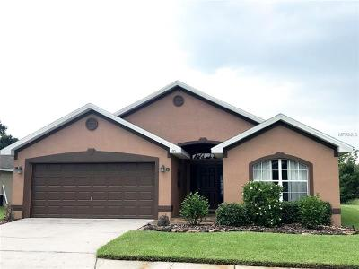 Lakeland Single Family Home For Sale: 1771 Turtle Rock Drive