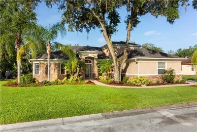 Lakeland Single Family Home For Sale: 650 Christina Lake Drive