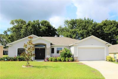 Lakeland Single Family Home For Sale: 5756 Woodruff Way