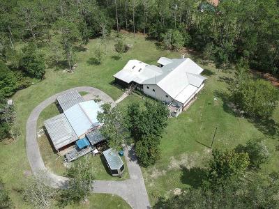 Ormond Beach Single Family Home For Sale: 228 Conifer Lane