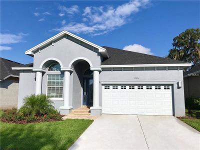 Lakeland Single Family Home For Sale: 1035 Stoney Creek Drive