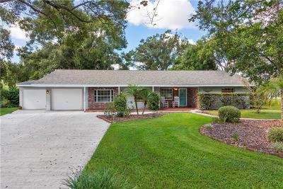 Lakeland Single Family Home For Sale: 6111 Andrea Drive