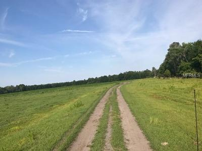 Residential Lots & Land For Sale: State Road 33