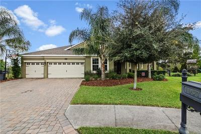 Winter Haven Single Family Home For Sale: 1067 Lena Run Court