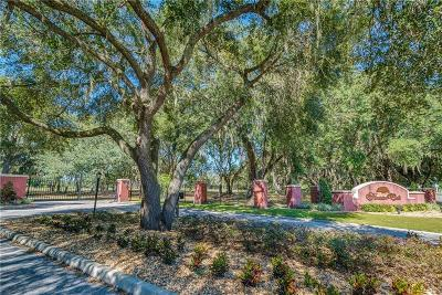 Plant City Residential Lots & Land For Sale: 4030 Shady Meadow Drive #1