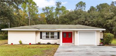 Lakeland Single Family Home For Sale: 1633 Itchepackesassa Drive