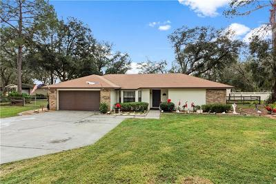 Lakeland Single Family Home For Sale: 5004 Musket Drive