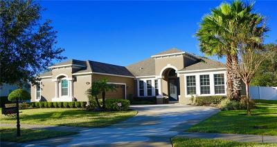 Auburndale Single Family Home For Sale: 352 Magneta Loop