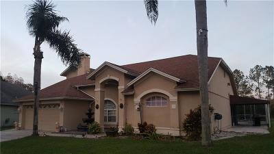 Tampa Single Family Home For Sale: 13525 Ironton Drive