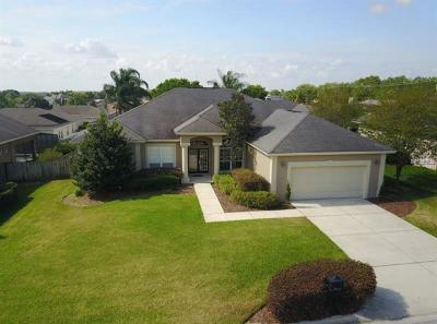 Lakeland Single Family Home For Sale: 2855 Meridian Point Lane