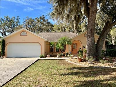 Single Family Home For Sale: 36049 Pinetree