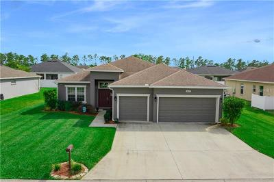 Lakeland Single Family Home For Sale: 2837 Whitney Street