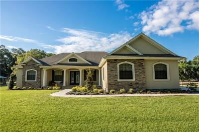 Plant City Single Family Home For Sale: 2105 E Knights Griffin Road