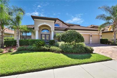 Lakeland Single Family Home For Sale: 3959 Sunset Lake Drive