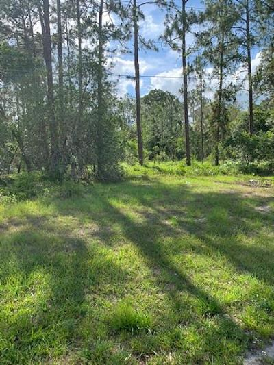 Polk City Residential Lots & Land For Sale: 17000 Commonwealth Avenue N