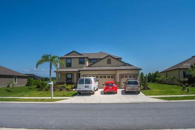 Lakeland Single Family Home For Sale: 2346 Sebago Drive