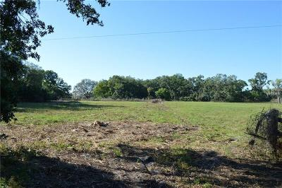 Plant City Residential Lots & Land For Sale: 4202 Papa Wilder Road