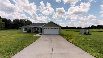 Dade City Single Family Home For Sale: 39360 Sparkman Road
