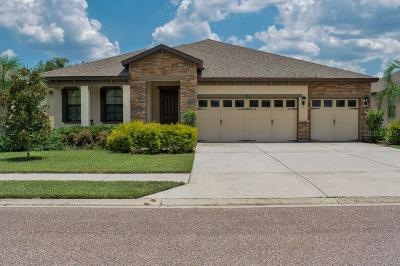 Lakeland Single Family Home For Sale: 1381 Heritage Landings Drive