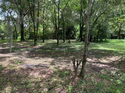Lakeland Residential Lots & Land For Sale: 0 Wilkens Avenue