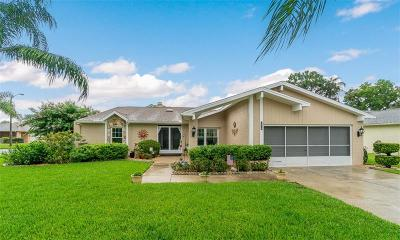 New Port Richey Single Family Home For Sale: 5914 Fall River Drive