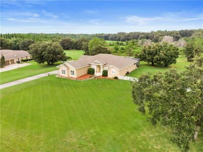 Lakeland Single Family Home For Sale: 1337 Turkey Trail