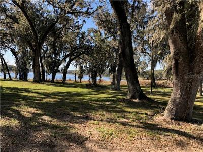 Pinellas County, Pasco County, Hernando County, Hillsborough County, Marion County Residential Lots & Land For Sale: 34510 Clayton Road