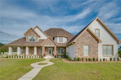 Lakeland Single Family Home For Sale: 14701 Evans Ranch Road