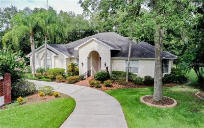 Lakeland Single Family Home For Sale: 7205 Millbrook Oaks Drive