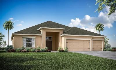 Auburndale Single Family Home For Sale: 144 Walkers Point Drive