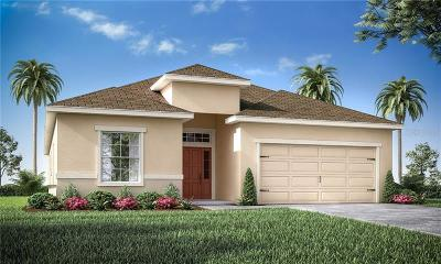 Haines City Single Family Home For Sale: 653 Persian