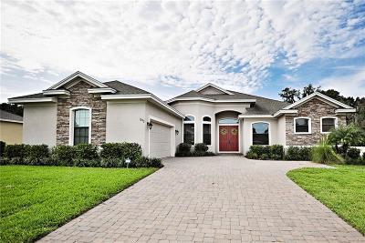 Lakeland Single Family Home For Sale: 1292 Devin Oaks Court