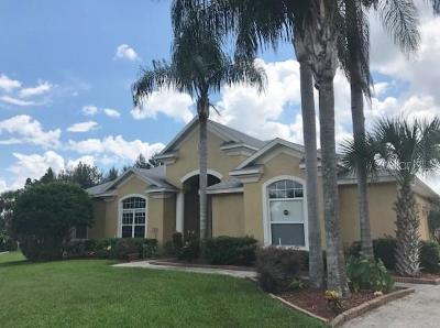 Lakeland Single Family Home For Sale: 2551 Crews Lake Hills Loop S
