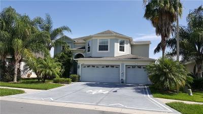 Lakeland Single Family Home For Sale: 3689 Covington Lane