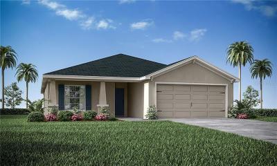 Lakeland Single Family Home For Sale: 3914 White Ibis