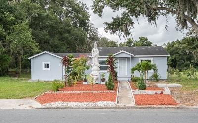 Lakeland Single Family Home For Sale: 1316 W 8th Street