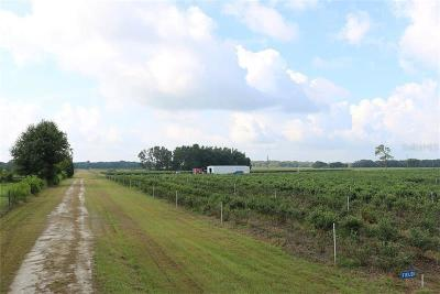 Pasco County Residential Lots & Land For Sale: 28978 Johnston Road