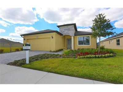 Lake County, Orange County, Osceola County, Seminole County Single Family Home For Sale: 8711 Bridgeport Bay Circle