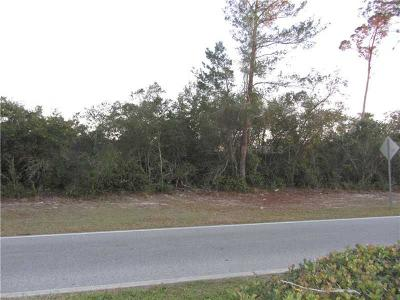 Volusia County Residential Lots & Land For Sale: 2863 Elkcam Boulevard