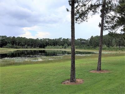 Lake Mary Residential Lots & Land For Sale: 116 E Greentree Lane
