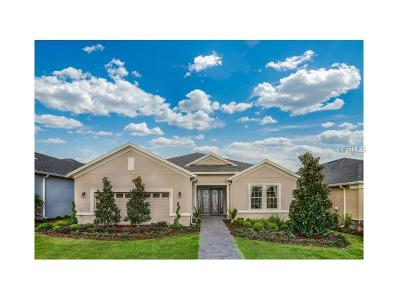 Lake County, Orange County, Osceola County, Seminole County Single Family Home For Sale: 983 Ridgeglen Way