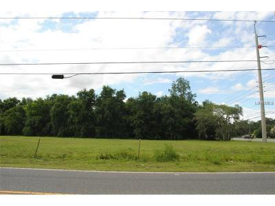 Orlando Residential Lots & Land For Sale: 8303 A D Mims Road