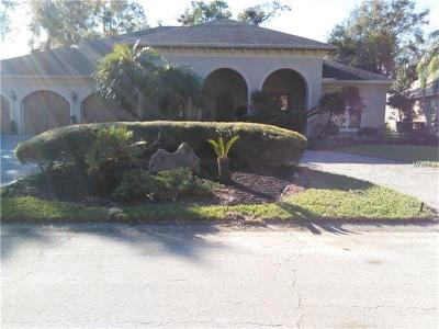 Ormond Beach Single Family Home For Sale: 119 Squirrel Lane