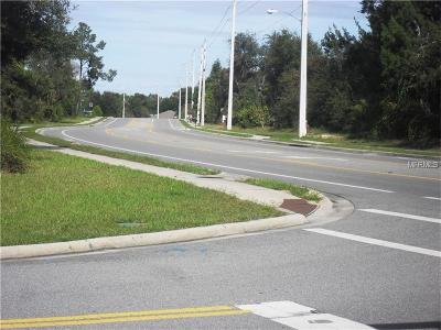 Deltona FL Residential Lots & Land For Sale: $174,900