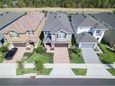 Kissimmee Single Family Home For Sale: 521 Lasso Drive