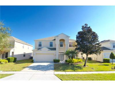 Kissimmee Single Family Home For Sale: 2635 Daulby Street