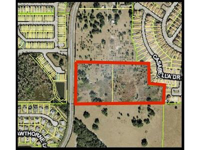 Kissimmee Residential Lots & Land For Sale: 2901 Simpson Road